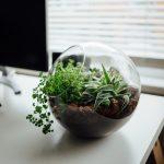 Büroökologie: Tipps für nachhaltigen Workflow