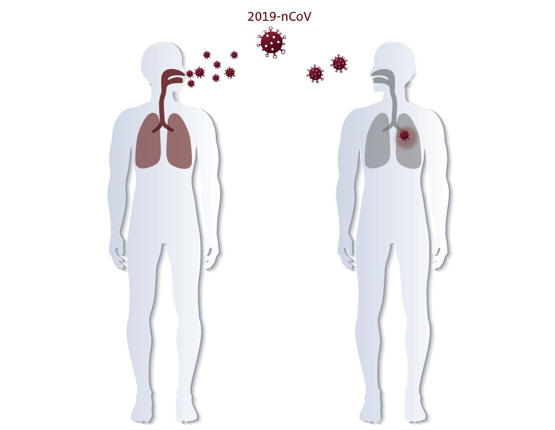 Die Infektion mit dem aktuellen Coronavirus verbreitet sich räumlich und zeitlich ungewöhnlich schnell. Sie erfolgt sowohl über die Luft als auch physischen Kontakt. Abbildung: ©Hugentobler
