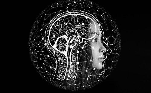 Wie passt sich das analoge Gehirn der digitalen Arbeitswelt an? Abbildung: Gerd Altmann, Pixabay